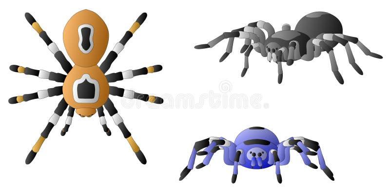 Download Spiders stock vector. Illustration of element, halloween - 25561570