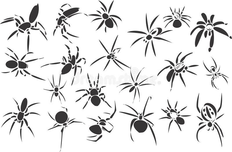 Spiders royalty free illustration