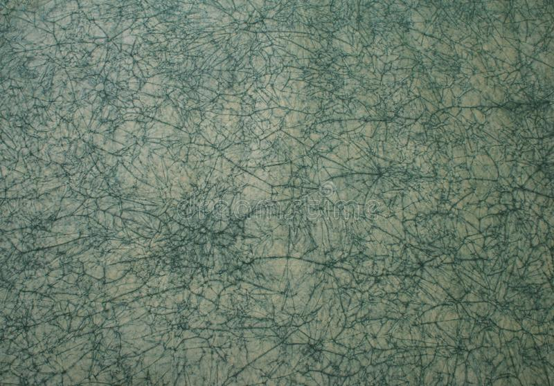 Spiderweb喜欢纸模式 免版税库存图片