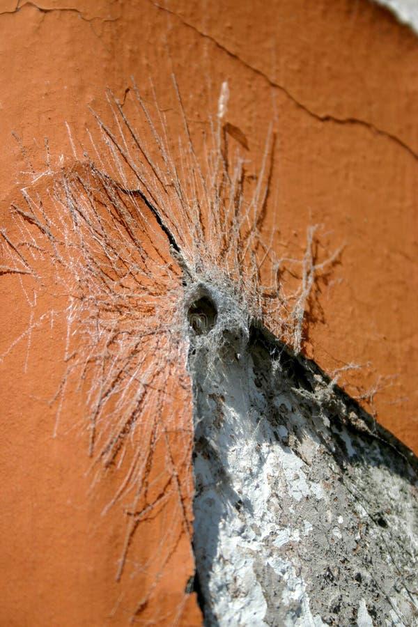 Spiderweb stock foto's