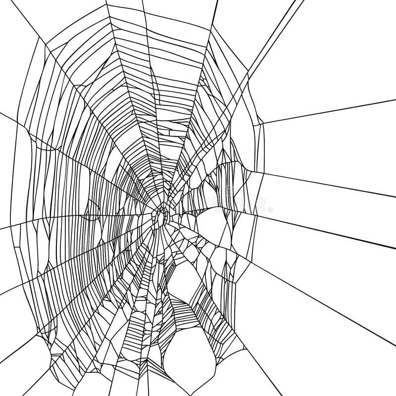 Spiderweb vector illustration