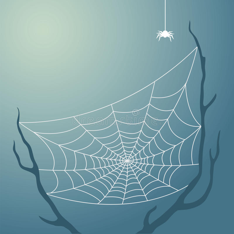 Spiderweb ilustração do vetor