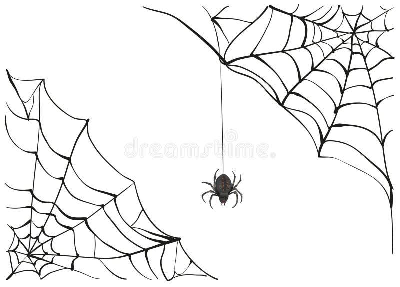 spiderweb Duża czarna pająk sieć Czarny straszny pająk sieć Jadu pająk ilustracji