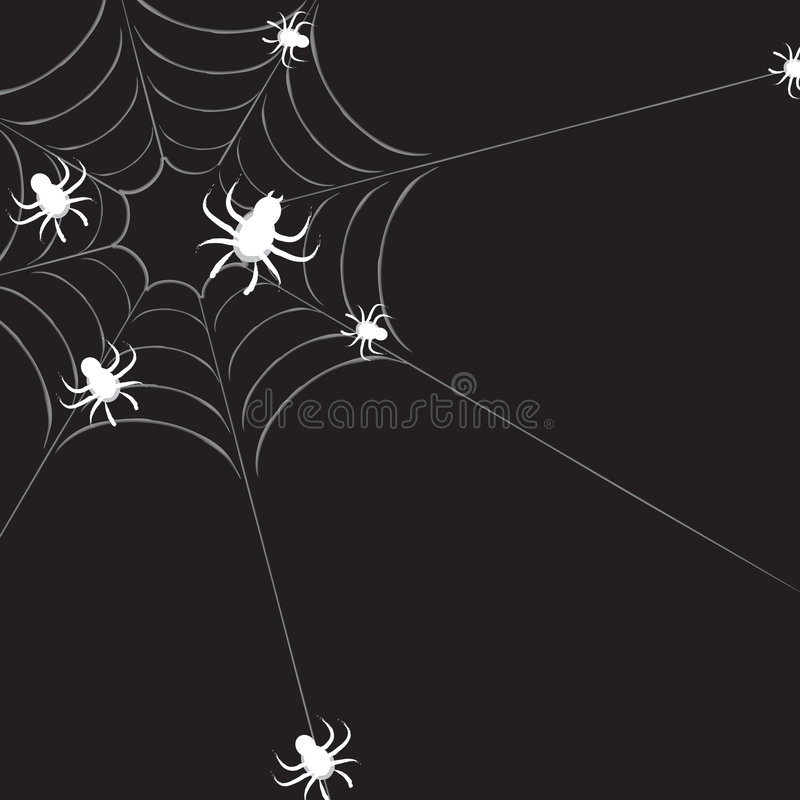 Spiderweb With Spiders Royalty Free Stock Images