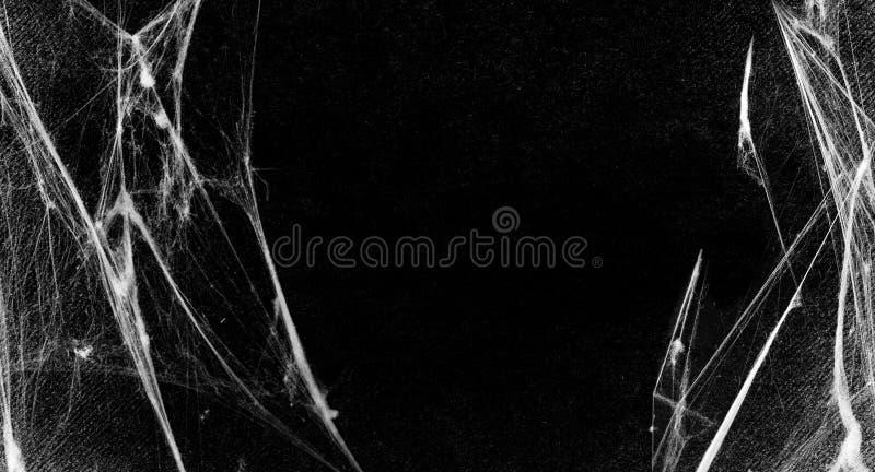 Spiderwebs aisló en fondo negro del grunge Partido de Víspera de Todos los Santos stock de ilustración