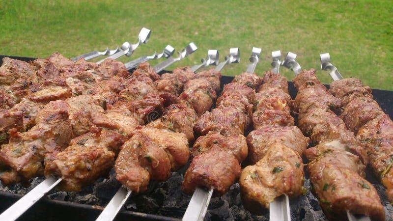 Spiedi della carne di maiale con le erbe immagini stock libere da diritti