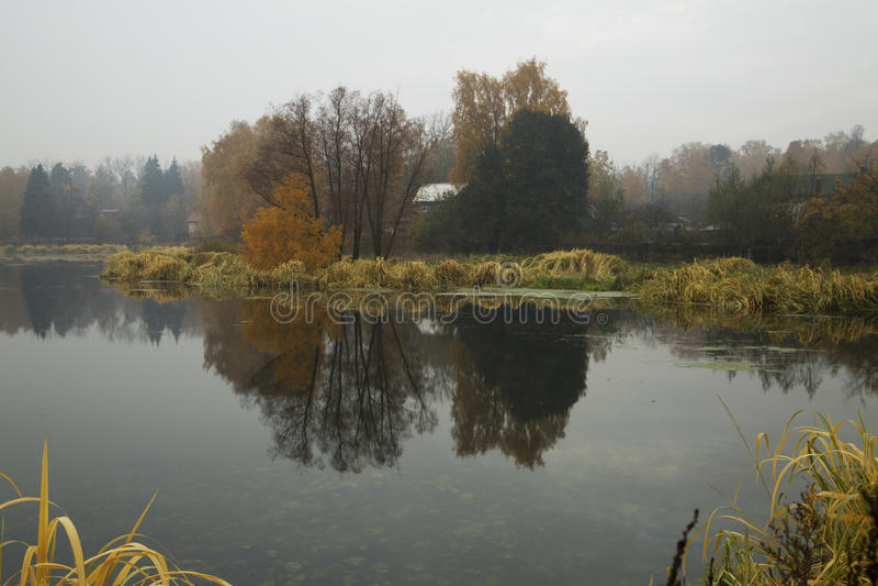 Spiegel auf dem Wasser lizenzfreie stockfotos