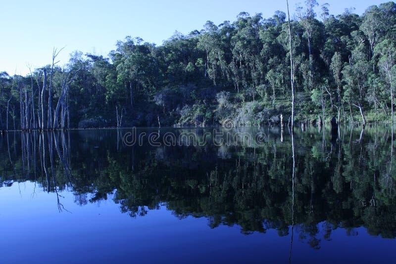 Spiegelbeeld stock afbeelding