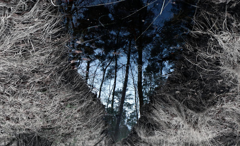 Spiegelstroom II stock foto's