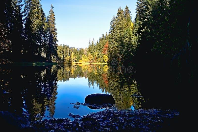 Spiegelung auf dem Wasserspiegel des Vrbicke Tarn in Demanovska-Tal in Slowakei lizenzfreie stockfotografie
