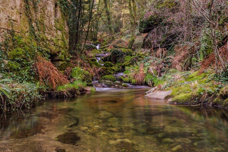 Spiegelwater in Muinos do Tripes, Tui stock foto