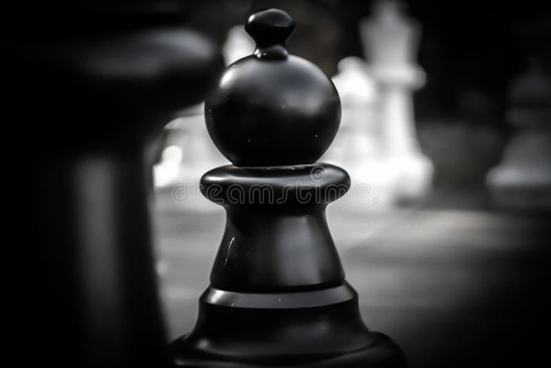 Spiel von Königen stockbilder