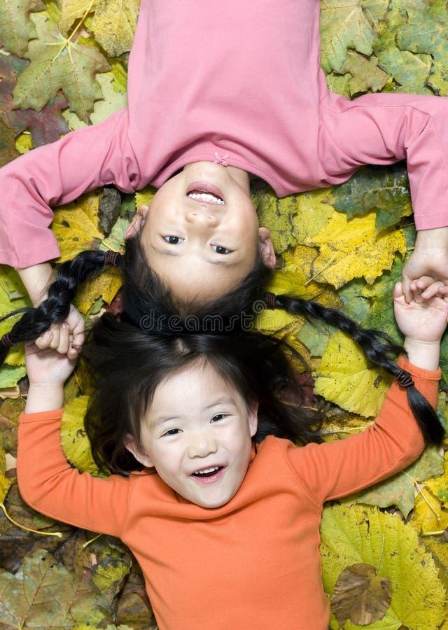 Spielen in den Blättern stockfotos