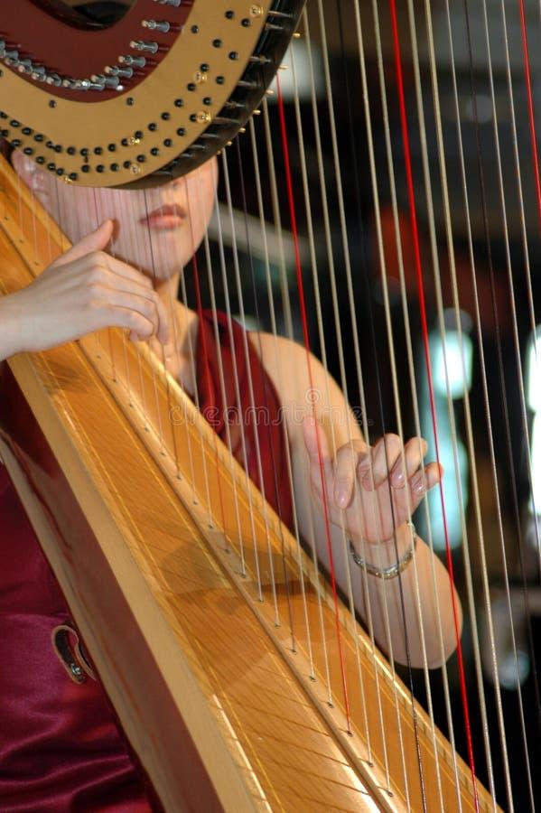 Spielen der Harfe lizenzfreies stockbild