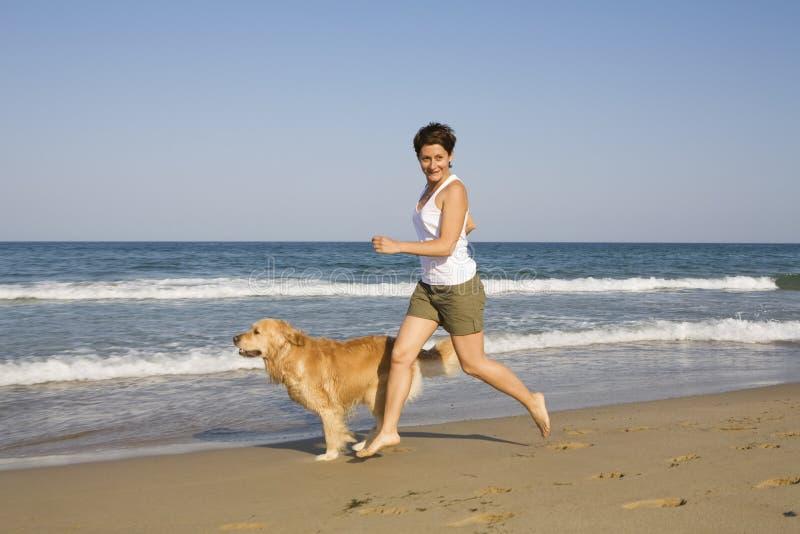Spielen des jungen Mädchens und des Hundes lizenzfreie stockfotos