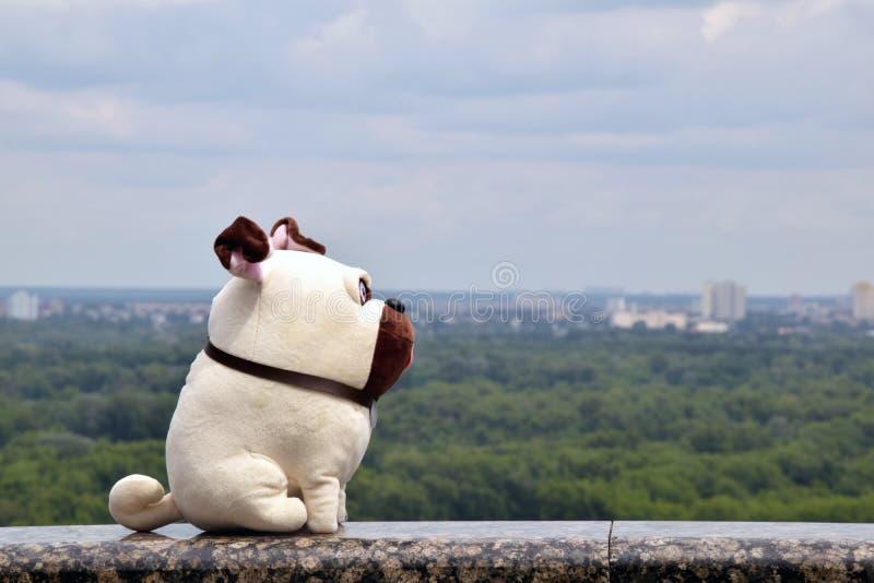 spielen Sie die Pugnatur Pug-Spielzeugstadt, die das weiche Spielzeug eines Pughundes in der Stadt auf einem Brücken- und Stadtsk stockfoto