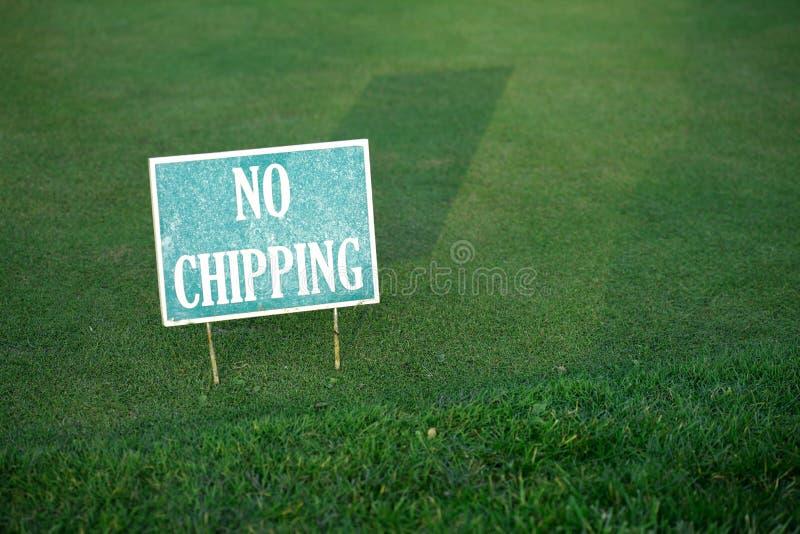 Spielen Sie Grün Golf stockbild