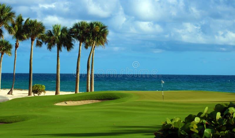 Spielen Sie grünen Strandpalmensand und -ozean im tropischen Paradies Golf lizenzfreie stockfotografie