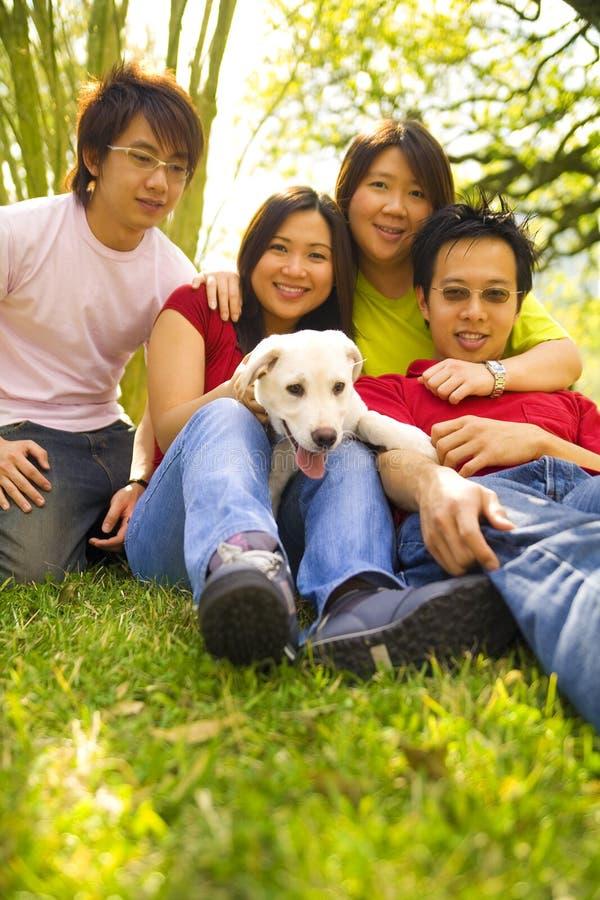 Spielen zusammen mit Hund lizenzfreies stockbild