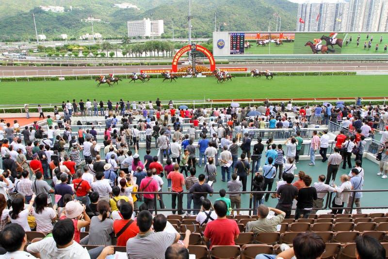 Spieler Sha Tin Racecourse, die im Zahlwerk spielen lizenzfreies stockbild