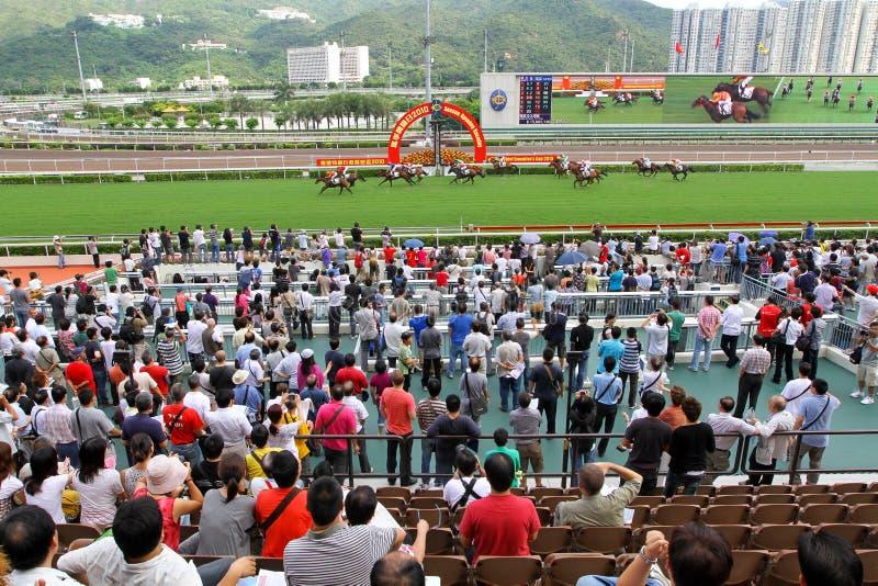 Spieler Sha Tin Racecourse, die im Zahlwerk spielen stockfotografie