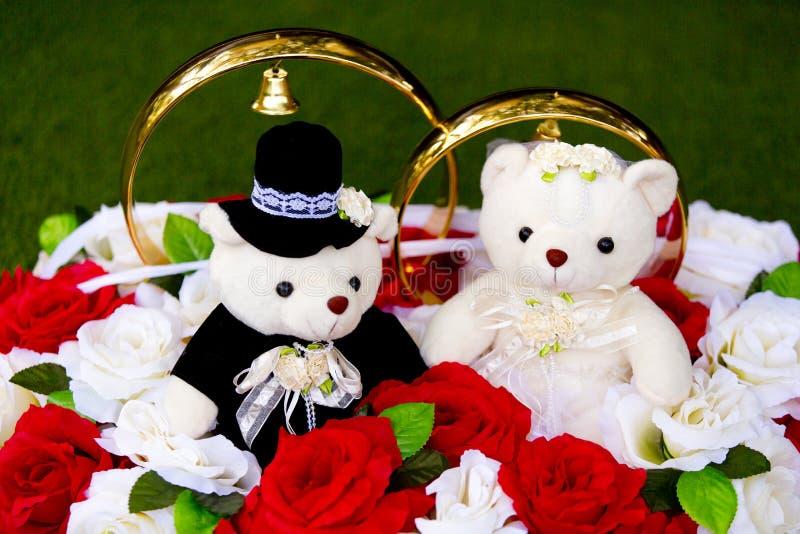 Spielzeug trägt - Teddybären - Braut und Bräutigam - mit großen goldenen Eheringen stockbild