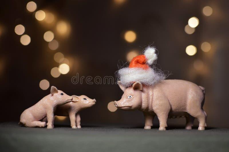 Spielzeugschwein in Sankt Kappe lizenzfreies stockbild