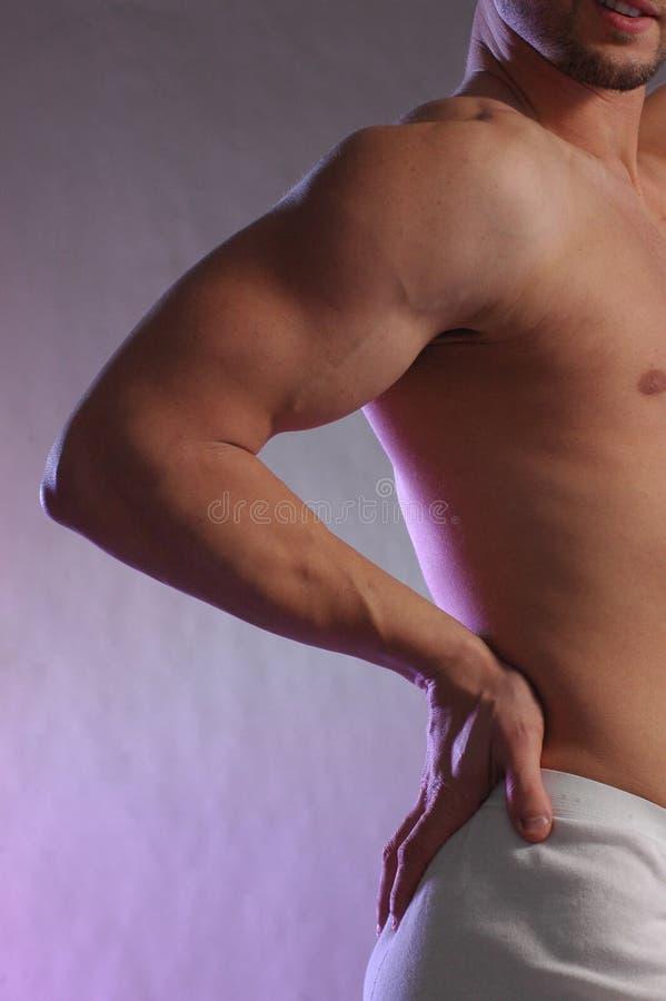 Spier mannetje op purple stock afbeeldingen