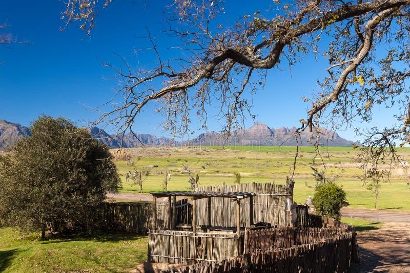 Spier, Stellenbosch, Zuid-Afrika stock foto's