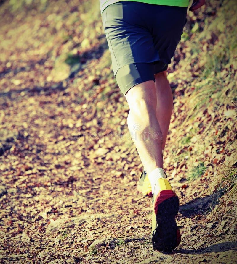 spierbenen van de jonge atleet tijdens een runnin in het hele land stock foto's