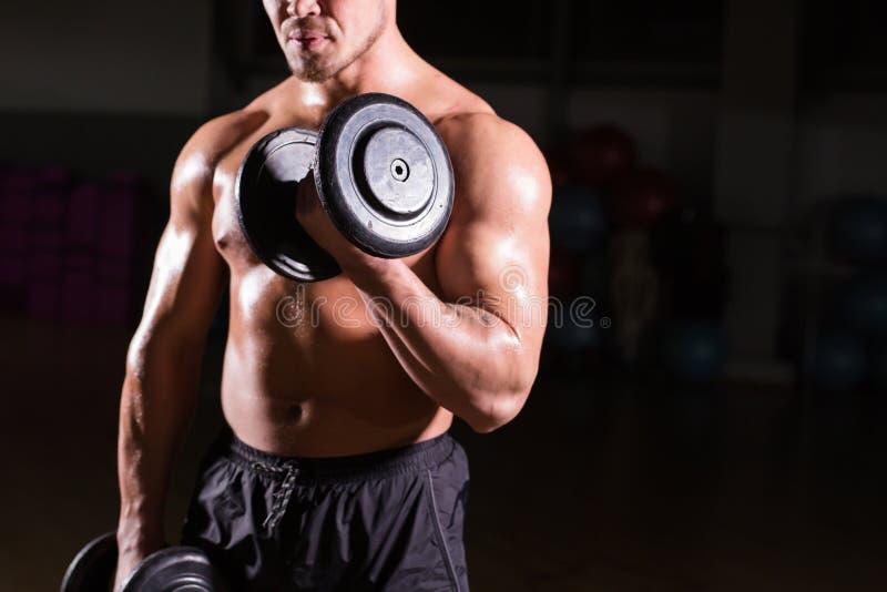 Spiermens die in gymnastiek uitwerken die oefeningen met domoren doen bij bicepsen, sterke mannelijke naakte torsoabs stock afbeelding