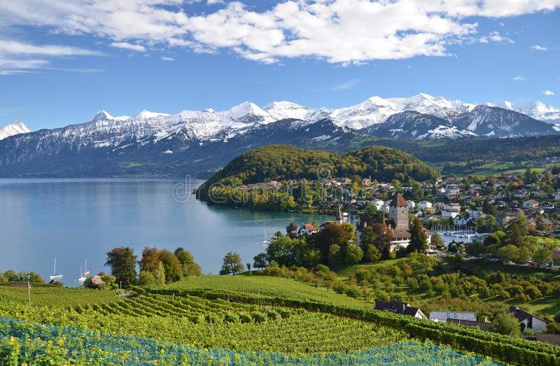 Spiez kasztel, Szwajcaria zdjęcia stock