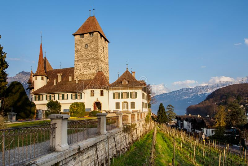 Spiez-Schloss gelegen auf See Thun in der Schweiz lizenzfreie stockfotografie