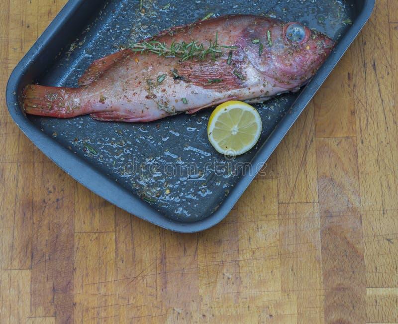 Spigola marinata con i rosmarini ed il limone sulla teglia da forno sulla c di legno immagini stock