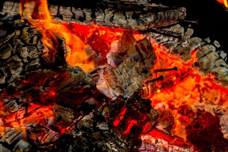 Spikar i glöden från brinnande wood paletter royaltyfri foto