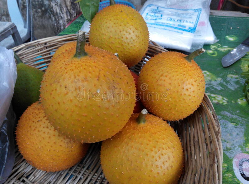 Spike fruits stock images