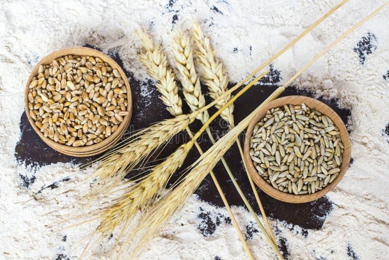 Spikelets av vete och träbunke två med korn på spillt mjöl Top beskådar royaltyfria bilder