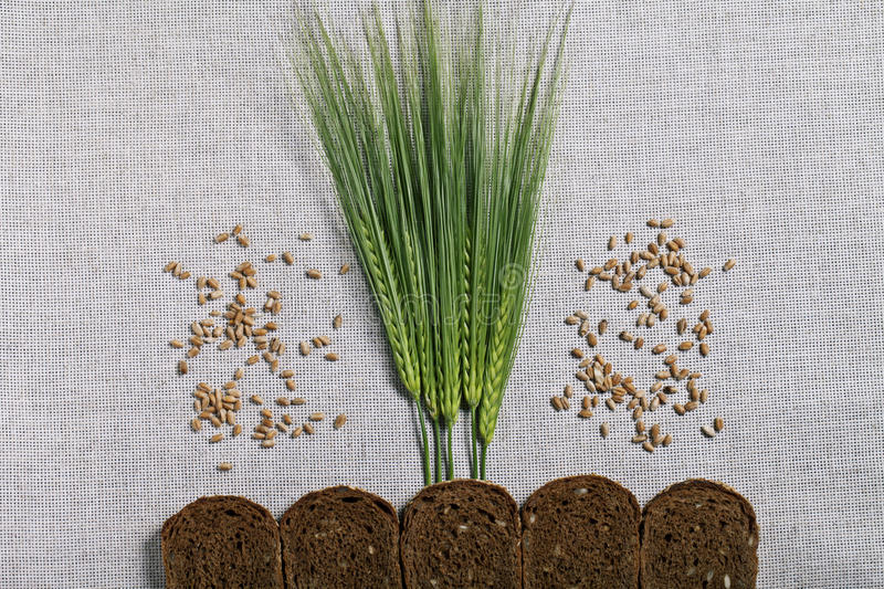 Spikes and bread. Background wallpaper concept royalty free stock photos