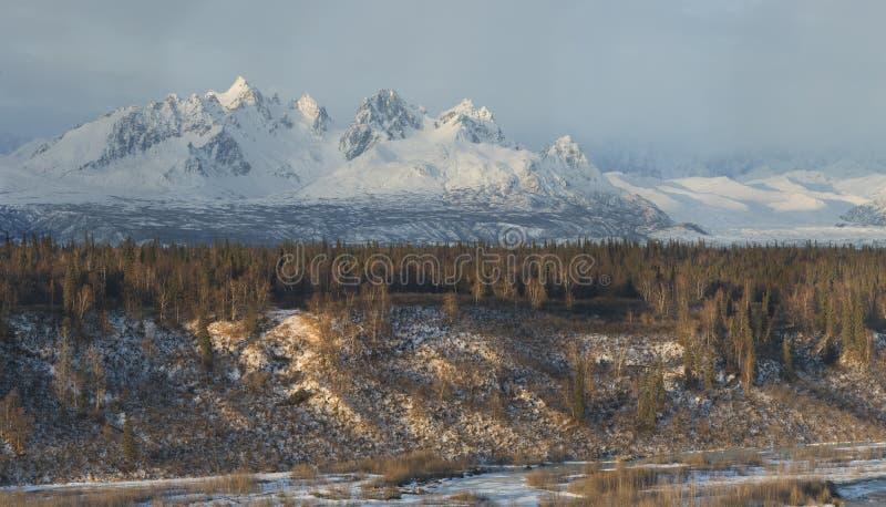 Spiky mountain range in Alaska range, panoramic royalty free stock photos