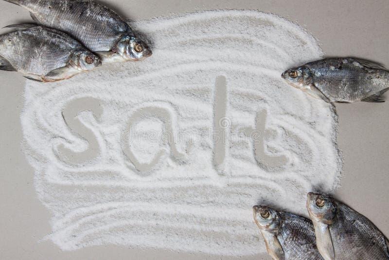 Spill av den salta och torkade rimmade fisken royaltyfria bilder