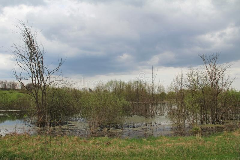 Spill of the river in the fields in early spring in cloudy weather. Russia stock photo