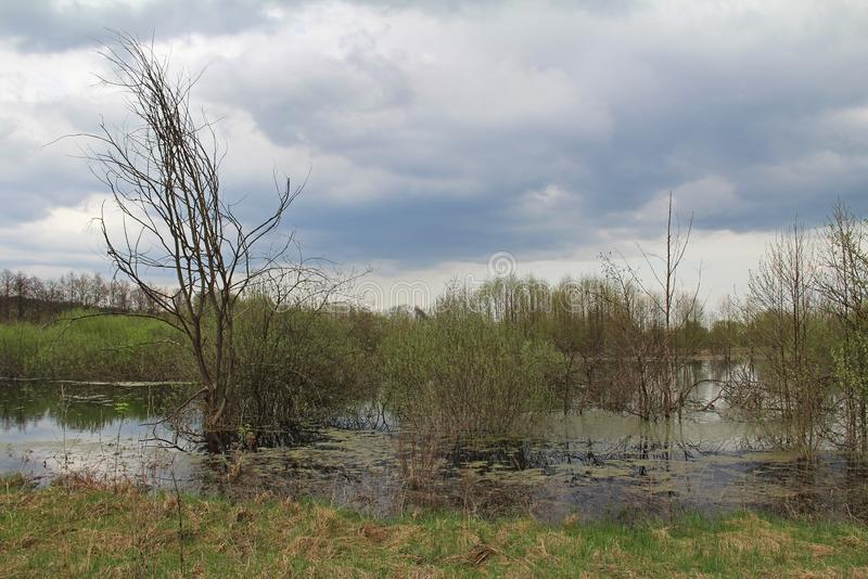 Spill of the river in the fields in early spring in cloudy weather. Russia royalty free stock photo