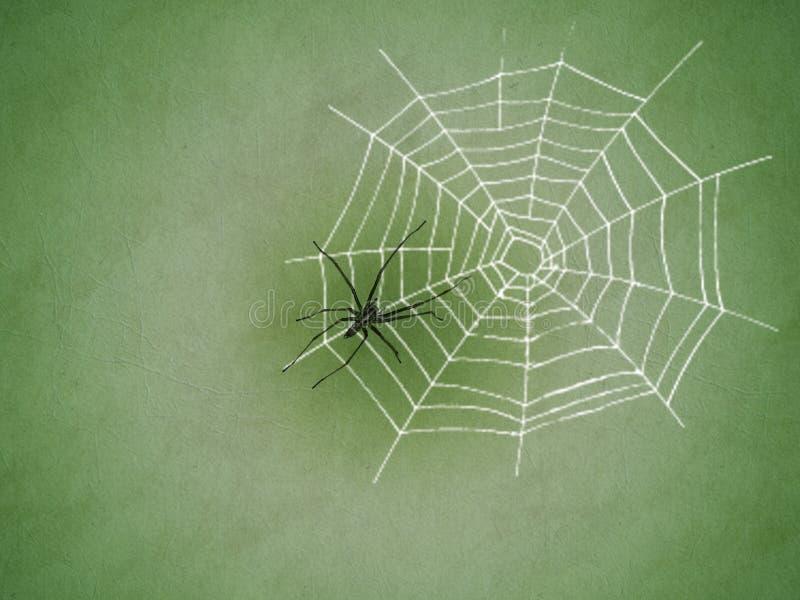Spin en de achtergrond van de Webtextuur royalty-vrije illustratie