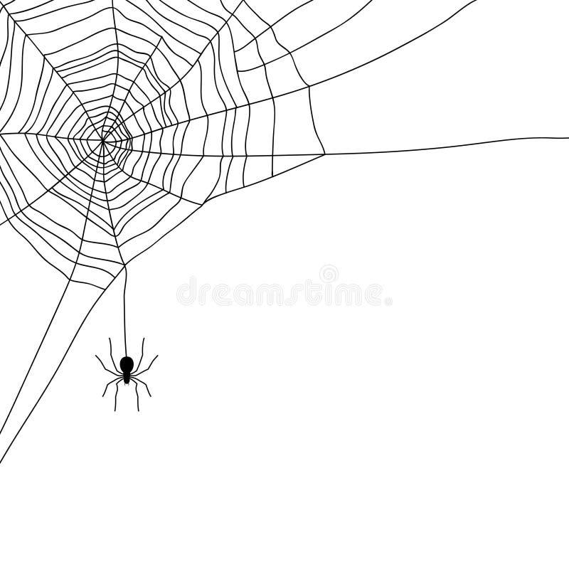Spin en Web op wit, stock illustratie