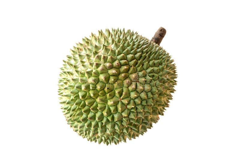 Spina famosa del nero del durian di frutti della Malesia fotografie stock libere da diritti