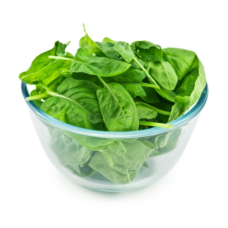 Free Spinach Royalty Free Stock Photo - 16667055
