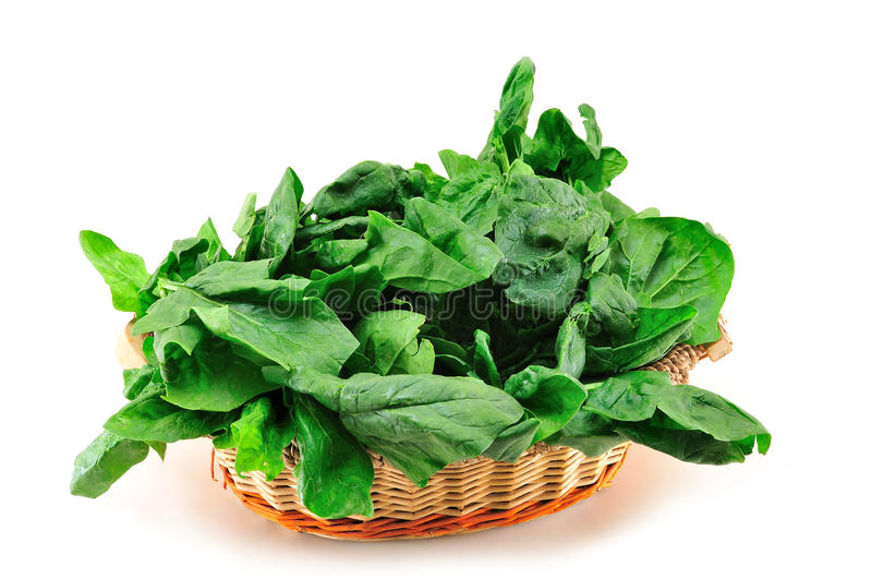 Spinach. Fresh spinach leaves isolated on white background