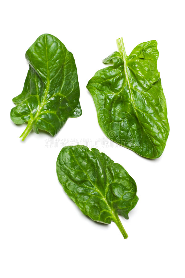 Spinach Royalty Free Stock Photo