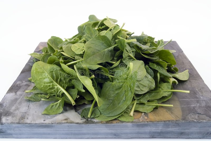 Download Spinach stock photo. Image of spinacia, spinach, vegetarianism - 8561800