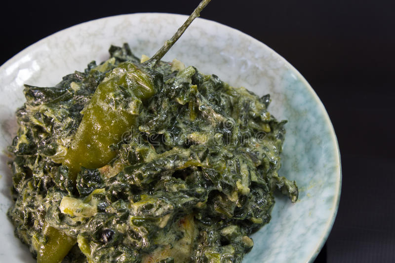 Download Spinach with coconut milk stock photo. Image of meal - 30832932
